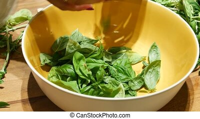 Hands tearing basil to bowl - Unrecognizable woman tearing...