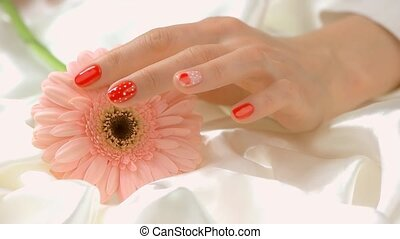 Hands touching gerbera, slow motion. Close up beautiful...