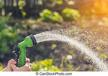 Hands with a hose pour water on the garden