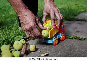 Hands With Apples