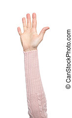 Hands with gestures isolated on a white background