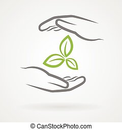 Hands with green leaves