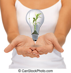 hands with green light bulb