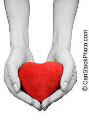 hands with heart isolated on white