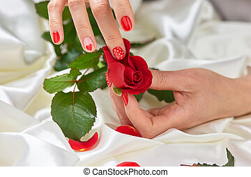 Hands with manicured nails and red rose.