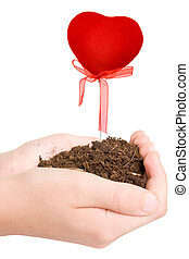hands with soil and growing heart