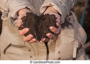 hands with soil