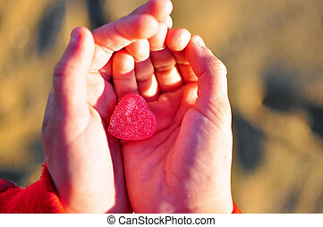 Hands with the heart