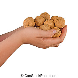 Hands with walnuts