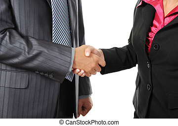 Handshake of business partners.