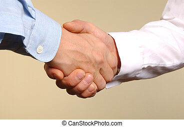 two young manager shaking hands with each other