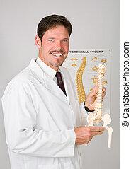 Handsome Chiropractor - Handsome chiropractor holding...