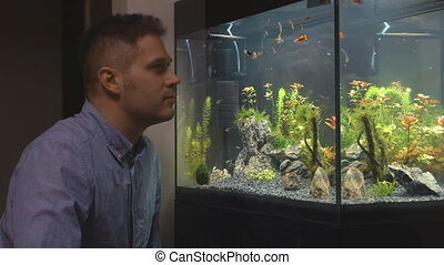 Handsome man looks at the fish in the aquarium at home.