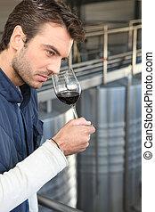 Handsome man smelling wine