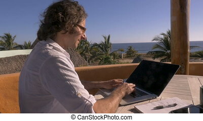 Handsome man telecommuting on laptop at his home office...