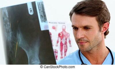 Handsome nurse examining an xray