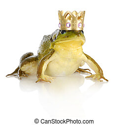 handsome prince - bullfrog wearing crown isolated on white...