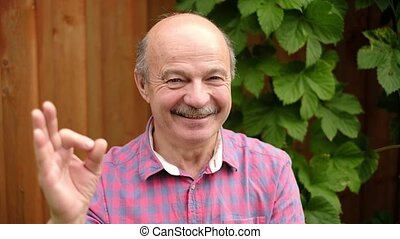 Handsome senior man standing outdoor doing ok sign with...