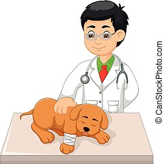 handsome veterinarian cartoon check dog with smile