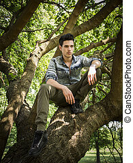 Handsome young man sitting on tree branches