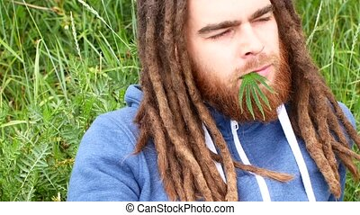 handsome young man with dreadlocks and a green leaf of...