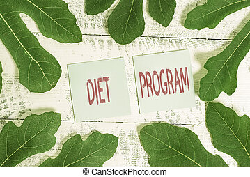 Handwriting text Diet Program. Concept meaning practice of eating food in a regulated and supervised fashion.