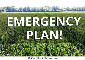 Handwriting text Emergency Plan. Concept meaning actions developed to mitigate damage of potential events.