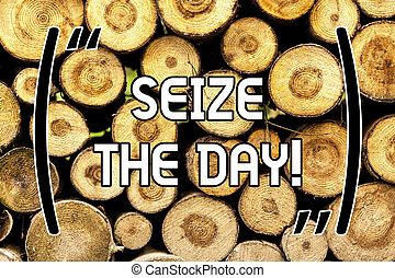 Handwriting text Seize The Day. Concept meaning Embrace opportunities Have motivation inspiration optimism Wooden background vintage wood wild message ideas intentions thoughts.