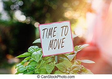 Handwriting text Time To Move. Concept meaning change in the same way or to reflect on what is current Plain empty paper attached to a stick and placed in the green leafy plants.
