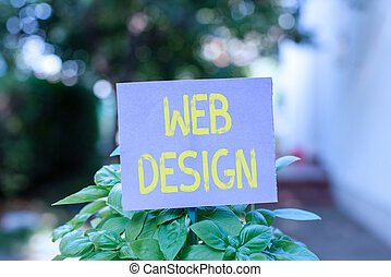 Handwriting text Web Design. Concept meaning Website development Designing and process of creating websites Plain empty paper attached to a stick and placed in the green leafy plants.