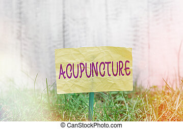 Handwriting text writing Acupuncture. Concept meaning system of integrative medicine involve pricking skin with needle Plain empty paper attached to a stick and placed in the green grassy land.
