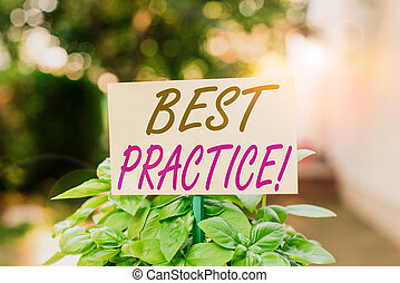Handwriting text writing Best Practice. Concept meaning commercial procedures accepted prescribed being correct Plain empty paper attached to a stick and placed in the green leafy plants.
