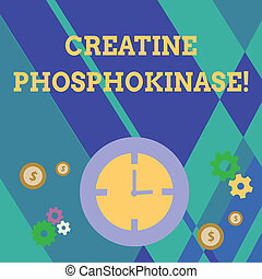 Handwriting text writing Creatine Phosphokinase. Conceptual photo protein that aids chemical changes in the body Time Management Icons of Clock, Cog Wheel Gears and Dollar Currency Sign