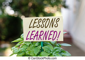 Handwriting text writing Lessons Learned. Concept meaning experiences distilled project that should actively taken Plain empty paper attached to a stick and placed in the green leafy plants.
