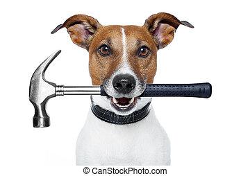 handyman dog with a hammer