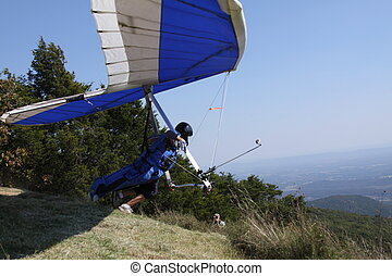 Hang Glider - Catch my drift? This glider was ready to take...