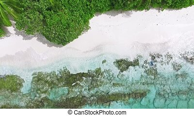 Hang over the edge of the shore on a tropical island in the Maldives.
