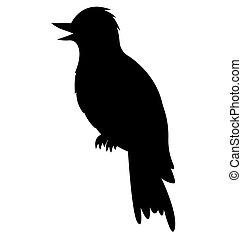 hangbird, 鳥, 黑色半面畫像