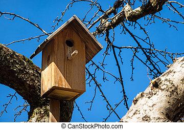 hangend, tak, woning, het nestelen doos, buitenshuis, zonnig...