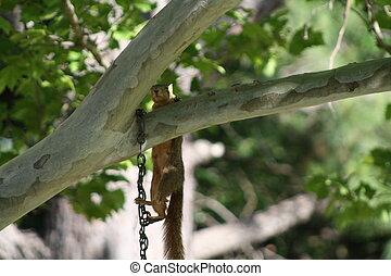 hanging around