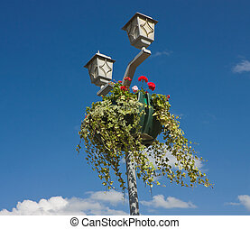 Hanging basket full of flowers.