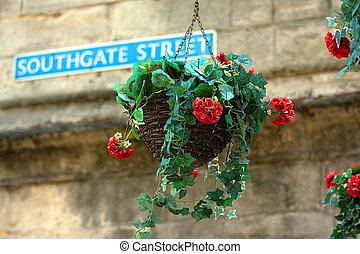 Hanging basket in Gloucester