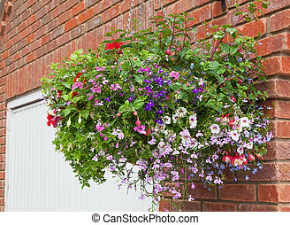 Hanging basket of colorful flowers in full bloom