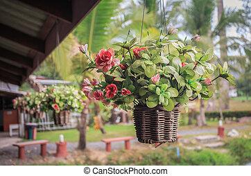 Hanging basket of flowers vintage