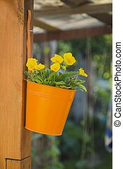 Hanging basket of yellow flowers