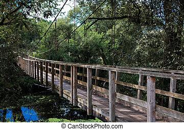 Hanging bridge over the river Nevezis
