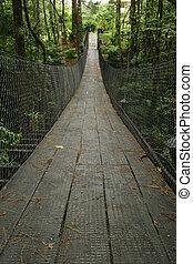 Hanging Bridges 2