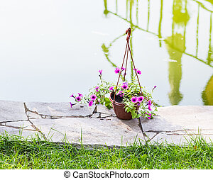 Hanging Flower Basket outdoors