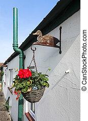 Hanging Flower Baskets - Hanging flower baskets and ducks