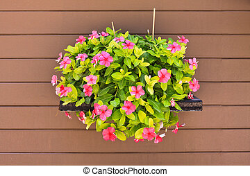 Hanging flower on wood wall